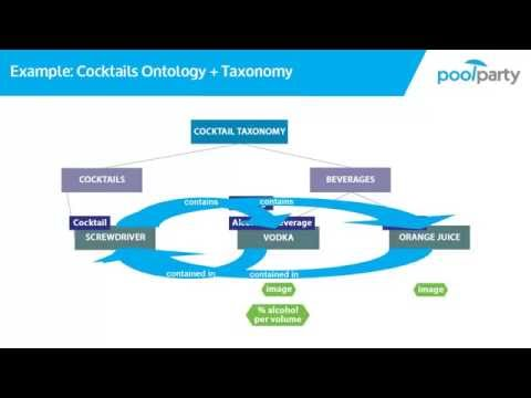 2.8 Anatomy of an Ontology