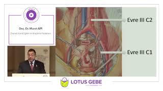 Doç. Dr. Murat Api - Endometrium Kanseri