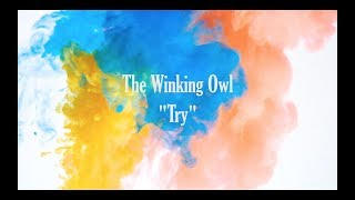 The Winking Owl - Try- (Official Music Video)