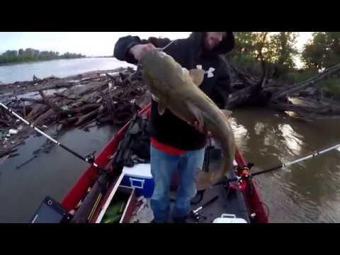 Missouri River Catfish Trifecta