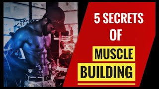 5 secrets of MUSCLE BUILDING | LEAN FITNESS |