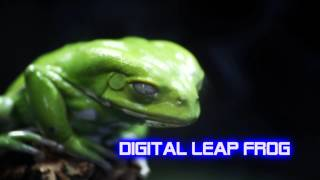 TeknoAXE's Royalty Free Music - Digital Leap Frog -- Glitch Hop -- Royalty Free Music