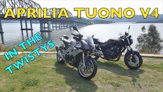Aprilia Tuono V4 in the Twistys