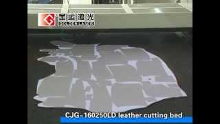 Genuine Leather Laser Cutting Machine Cjg-160250ld