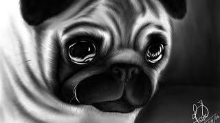 Dibujando un perro PUG paso a paso (ArtFlow)