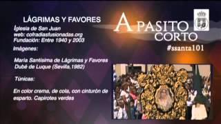 Semana Santa Málaga 2015: Domingo de Ramos Parte1 emitido por 101tv Málaga