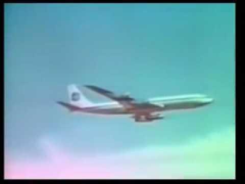 Venus Flytrap 1970