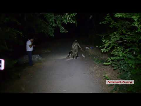 Видео 'Новости-N': На берегу реки застрелили николаевца