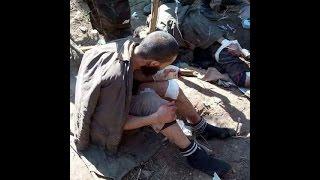 شاهد الجيش الجزائري كيف يعامل الإرهابيين