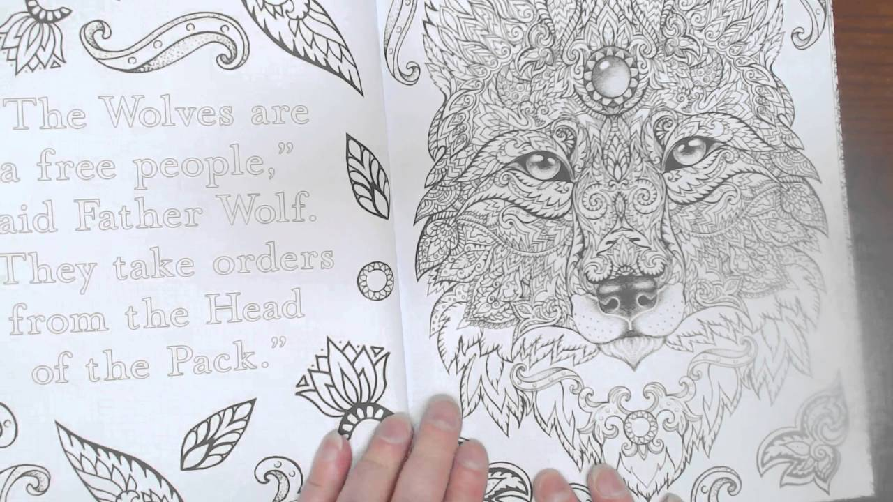 The Jungle Book published by Silver Dolphin Books YouTube