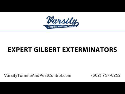 Expert Gilbert Exterminators at Varsity Termite & Pest Control
