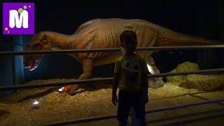 #6 Стамбул идем парк динозавров купим чемодан Микки Маус поиграем в лунном песке Jurassic Land