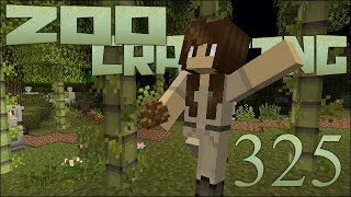 Zoo Crafting Special! Secrets of the Bamboo Forest - Episode #325 [Zoocast]