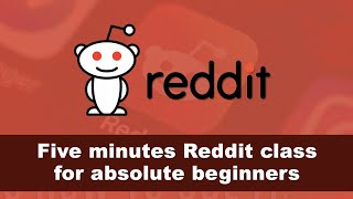 Five minutes Reddit cląss for absolute beginners