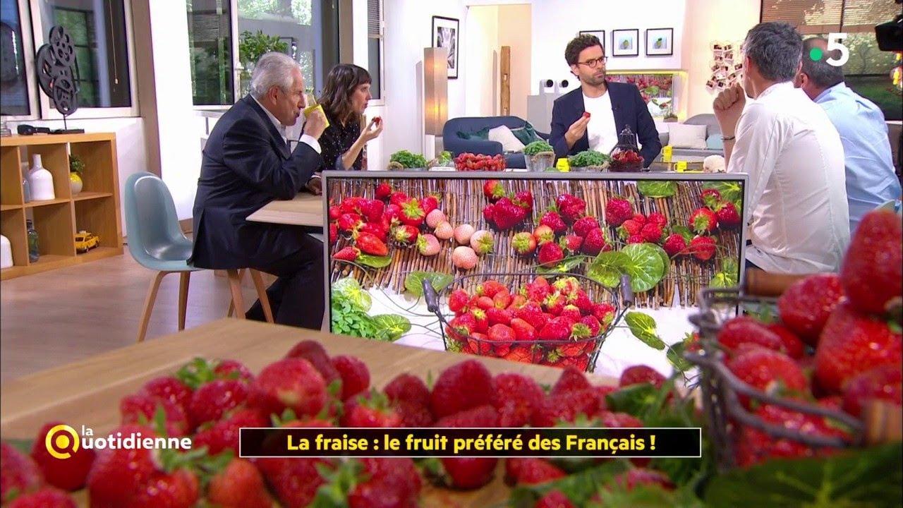 la fraise : le fruit préféré des français ! - youtube