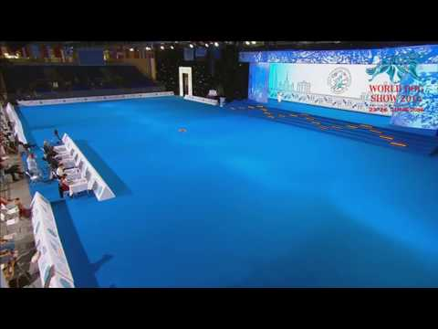 Dog Dance World Championship 2016 – Dancing/Marching Military Dog Best Ending Ever!