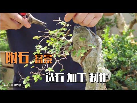 Attached stone bonsai