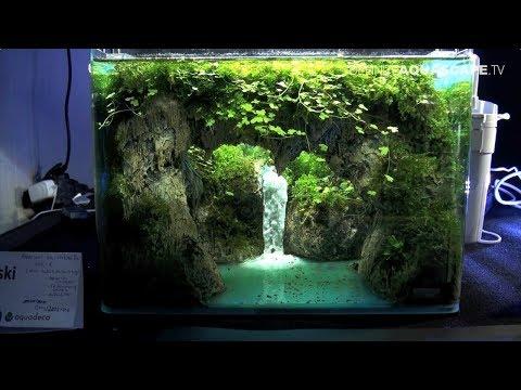 The Art of the Planted Aquarium 2017 - Nano tanks 1-3