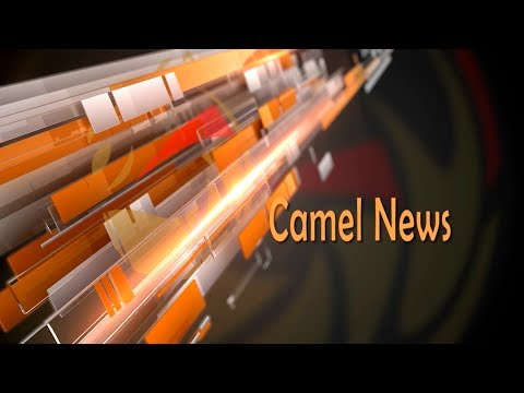 CAMEL NEWS Episode 3 Produced By DubaI Camel Racing Club 12.10.2016