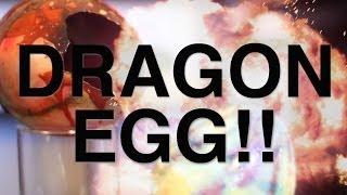 Dragon Egg!!