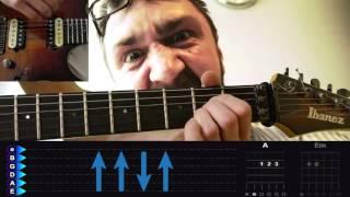 Ленинград   Экспонат  Подробный разбор на гитаре