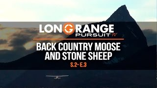 Long Range Pursuit | S2 E3 Back Country Moose and Stone Sheep