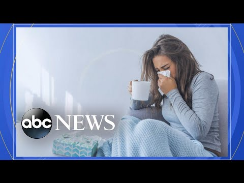 Researchers discover possible cure for common cold l ABC News