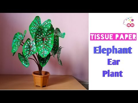 How to make A Fake Plant Using Tissue Paper