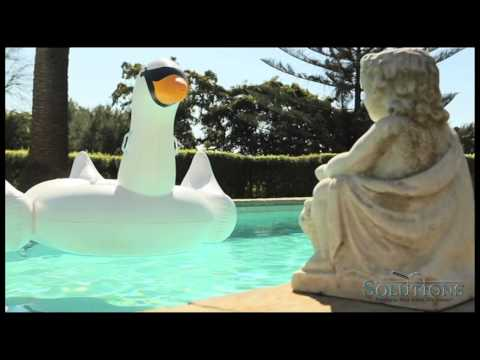 Giant Inflatable Swan Pool Float | Solutions.com