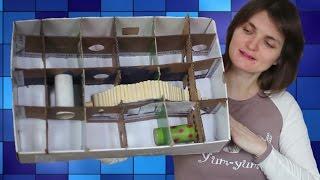 видео Лабиринт, аксессуары для хомяка своими руками