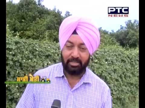 Saadi Kheti | Agriculture Special | PTC News | June 26, 2015