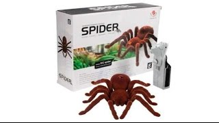Обзор игрушек паук на радиоуправлении