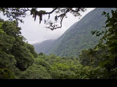 Bioko Island and Malabo    Equatorial Guinea