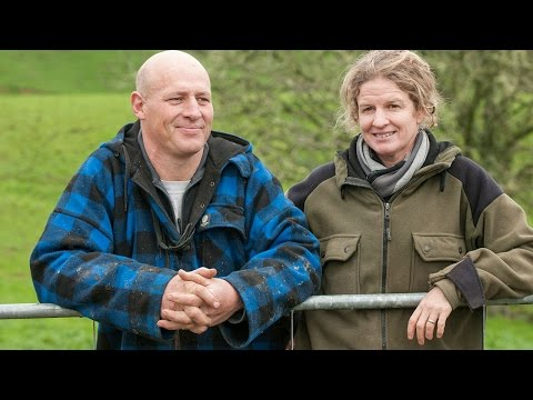 Innovation Farm: Forage use in a high performance sheep system