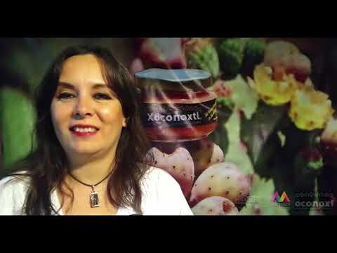 Judith Liceaga   EdoMéx   Retail Connection Expo ANTAD 2020 Modo Digital