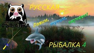 РУССКАЯ РЫБАЛКА 4 ЛАДОЖСКОЕ ОЗЕРО