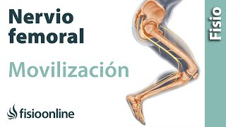 Tratamiento pinzamiento nervio femoral