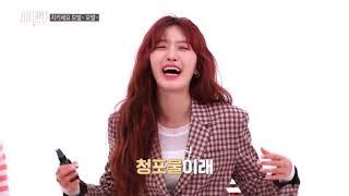 세큐어 탈모샴푸 동아TV
