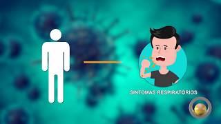 Conheça as formas de transmissão do coronavírus