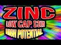 ZINC - LowCAP coin High potential!