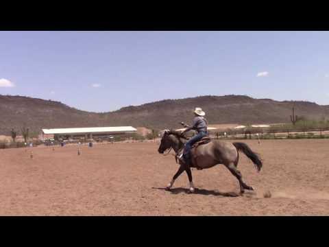 Kenda Lenseigne Mounted Shooting Training with 6 year old mare Gigi
