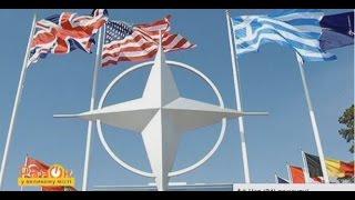 Жители НАТО хотят видеть Украину в Альянсе