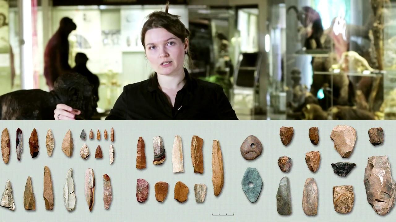 Как узнать возраст древней находки? Датировки. Елена Сударикова