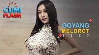 Download Video Lagi Goyang Drible, Pakaian Pamela Safitri Melorot - CumiFlash 25 Oktober 2018 MP3 3GP MP4