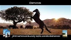 Ostwind - Aufbruch nach Ora - auf DVD, Blu-ray und als VoD