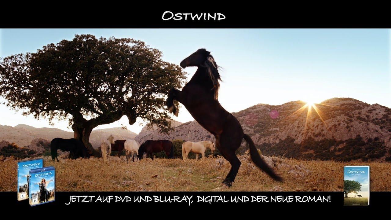 Ausmalbilder Ostwind: Auf DVD, Blu-ray Und Als VoD