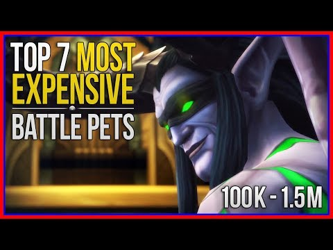 Top 7 Most Expensive Pets In WoW - And How To Farm Them!