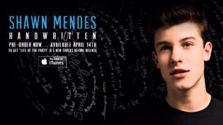 Shawn Mendes - Stitches (Audio + Lyrics)