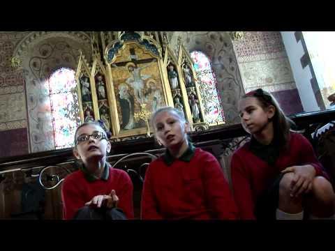Spring Lane School's film for Shine