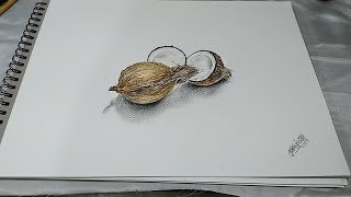 How to draw 3d drawing - Dry Coconut